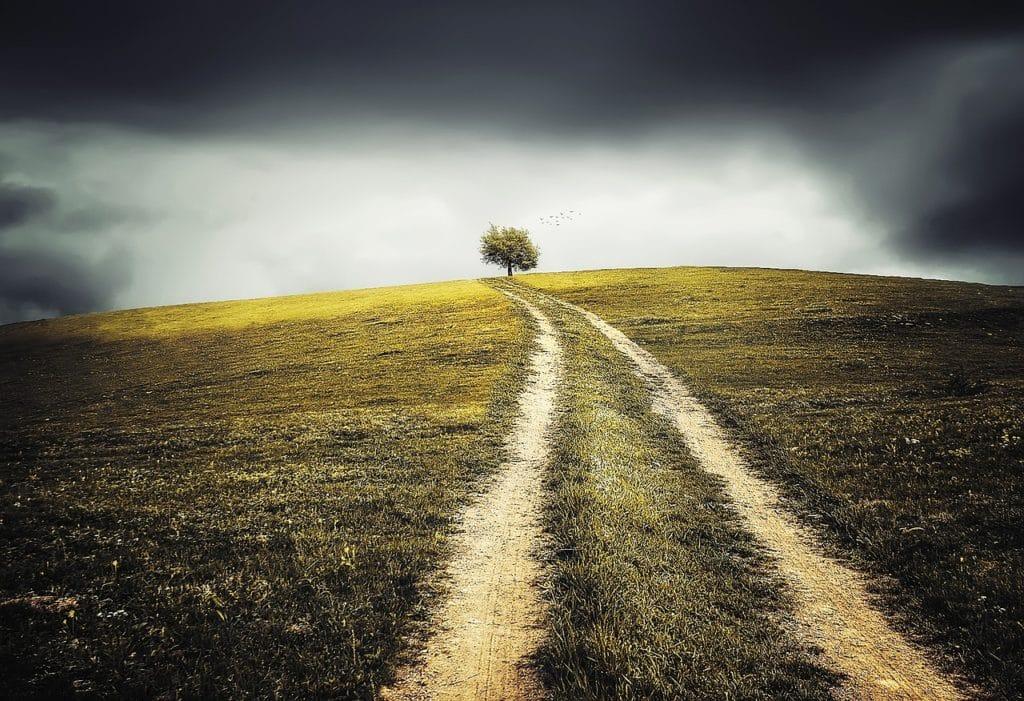 Wenn Gott uns auf unseren krummen Wegen begleitet